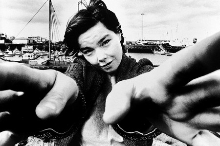 Björk par Dixon